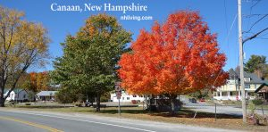 Autumn Photo Canaan NH US Route 4