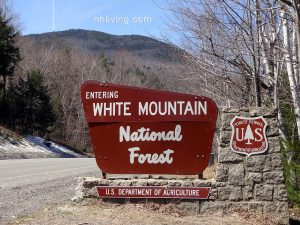 The White Mountain National Forest is a land of many uses.