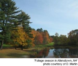 foliage season in Allenstown, New Hampshire