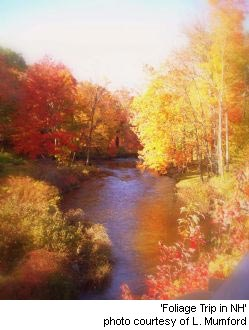 Foliage Season, Lee New Hampshire Seacoast region