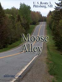 """Moose Alley"" is US Route 3 north of Pittsburg, NH"