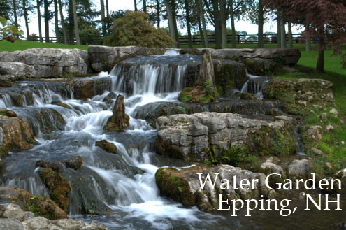 Epping NH Water Garden, Seacoast New Hampshire