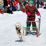 new hampshire dog sled races, annual nh event