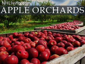 NHappleorchards