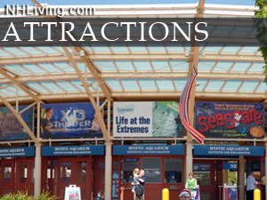From famous White Mountain Attractions to the Seacoast - Discover ALL of NH's great attractions.