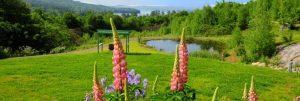 NH Retreat Vacations Newfound Lake