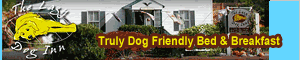 The Lazy Dog Inn, Chocorua New Hampshire, Lakes Region Pet Friendly Lodging