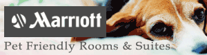 Marriott Pet Friendly Lodging Suites Wisconsin