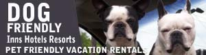 Pet Friendly Hotels Inn Suites