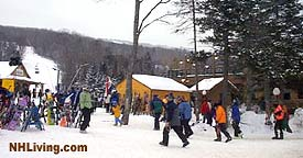 Bretton Woods Ski Area, Bretton Woods