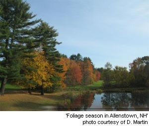 foliage season in Allenstown, New Hampshire