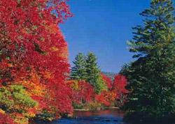Foliage Season Effingham New Hampshire Lakes region