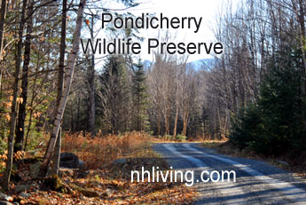 Pondicherry Preserve