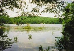 rocky bound pond croydon lake sunapee region NH