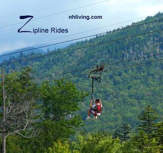 Alpine Adventures Zipline Tours