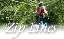 NH Canopy Tours, Ziplines, Zip Rides