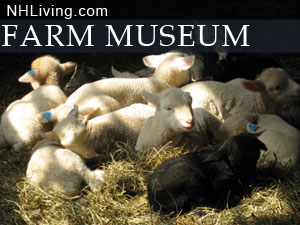 New Hampshire Farm Museum