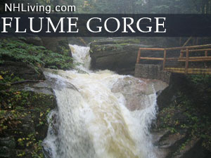 Flume Gorge, Franconia Notch State Park, White Mountain National Forest New Hampshire