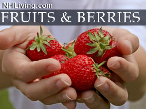 NH Berry Growers You Pick Fruit Farms