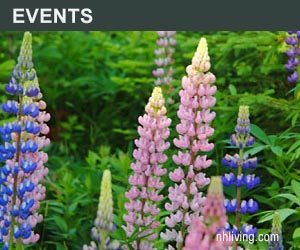 Top NH Events