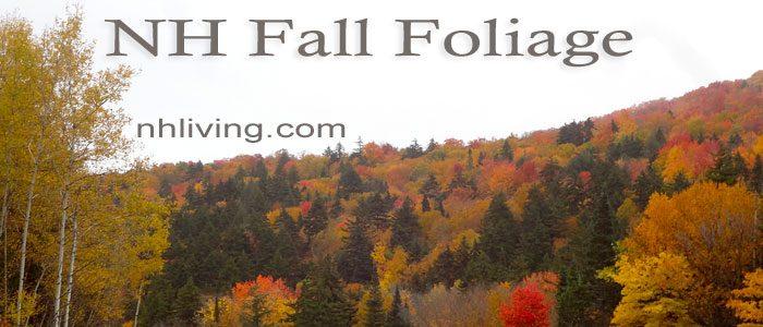 NH fall foliage tour