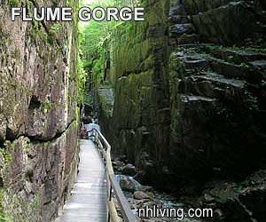 Franconia Notch Flume Gorge Photo Slideshow