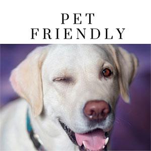 NH Pet Friendly Lodging